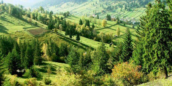 amenajament pastoral